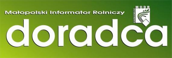 Logotyp czasopisma Doradca