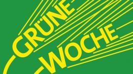 Międzynarodowe Targi Żywności Grüne Woch - logo